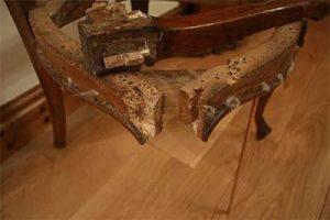 restaurar muebles antiguos infestados de carcoma