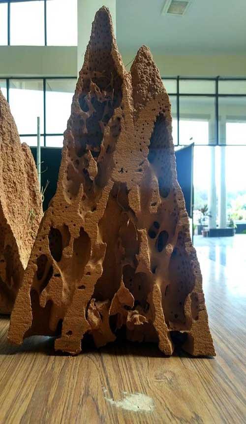 Sección de termitero